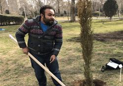 غرس نهال به دست اهالی رسانه و هنر در بوستان لاله پایتخت